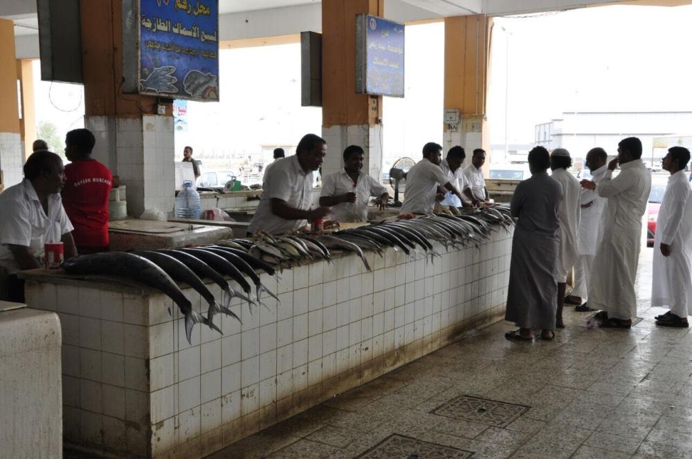 سمك «الكنعد» أغلى من الذبائح في جازان والأجواء تلهب الأسعار