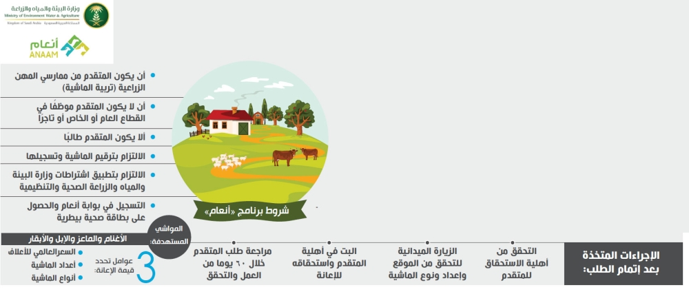 صرف إعانة مربي الماشية يونيو المقبل والتسجيل مستمر المدينة