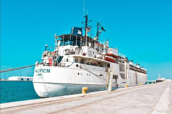 ميناء جازان يستقبل 12 000 رأس في أول شحنة أنعام من رومانيا المدينة