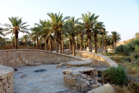 وادي حنيفة 10 متعة الطبيعة الممتدة على 80 كلم المدينة
