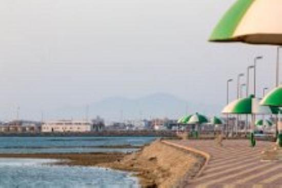 الرايس شواطئ خلابة للصيد ومحطة للطيور المهاجرة المدينة